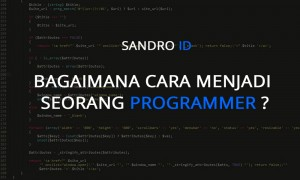 Bagaimana cara untuk menjadi seorang programmer?